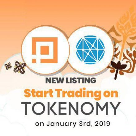 PlayGame Listing di Tokenomy Exchange Mulai 3 Januari 2019